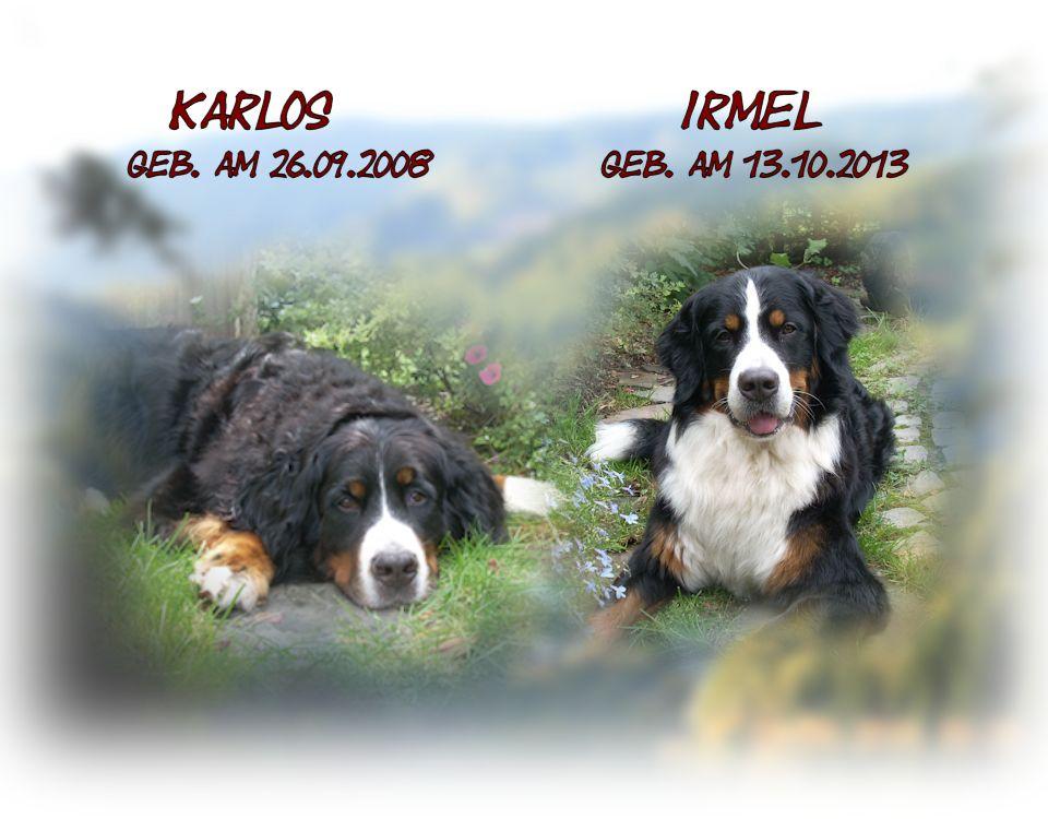 Unsere Berner Karlos und Irmel