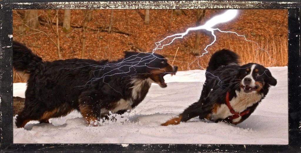 Ich mache Irmel eine Ansage, eine mit Blitz und Donner!